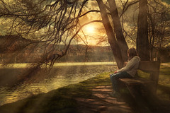 Relax & Enjoy (Chrisnaton) Tags: sunset lake tree nature childhood bench relax landscape sundown unwind redbench eveningmood