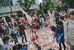 SAKURAKO - Sapporo Flower Carpet 2016. (MIKI Yoshihito. (#mikiyoshihito)) Tags: flower carpet sapporo hokkaido terrace daughter  sakurako  akarenga  2016     akarengaterrace sapporoflowercarpet2016 sapporoflowercarpet 78
