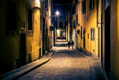 Florence night (Arutemu) Tags: italy italia italien italian city cityscape europe eu european sony sonya7r ilce ilcea7r florence tuscany tuscan toscana night nighttime nightscape nightview nightstreet urban lowlight nikon