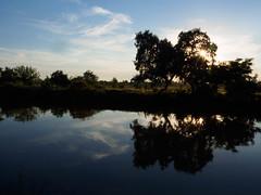 FO160616_6160048.jpg (Fernando Ortega C.) Tags: paisaje humedales ecosistemas deltadeldanubio 00naturaleza 06viajes 2016deltadanubio