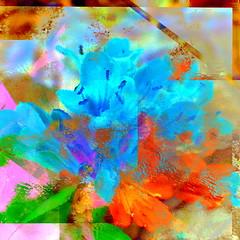 Summer Spray (Karen Kleis) Tags: flowers summer abstract photomanipulation digitalart blooms hypothetical artdigital arteffects awardtree crazygeniuses