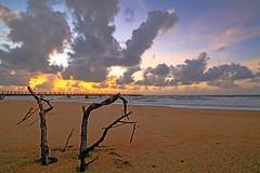 IMG_9272 ~ memburu mentari pagi (aca111) Tags: kijal kemaman terengganu malaysia travel places trip beach coast seascapes shorelines cloudscapes sunrise morning canon eos eos700d canoneos700d canonlens 10mm18mm efs10mm18mm wideangle
