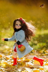 TAG game: These boots were made for walking... (Hurry Up Miss Jane) Tags: autumn game fall butterfly bokeh tag chase licca neemo applespure