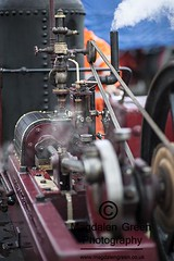 The Power of Steam - Steam Engine - Errol Airfield  Tayside Scotland (Magdalen Green Photography) Tags: vintage scotland dundee manatwork scottish tayside steamrally 0777 vintagesteamrally stationaryengines precisionengineering steamvehicles iaingordon thepowerofsteam magdalengreenphotography errolairfield scottishtractionenginesociety