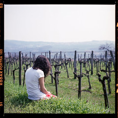 where is wonderland? (dxbach) Tags: camera red woman mountains green 6x6 tlr film girl field hair square lens waiting long day alone sitting twin sunny skirt curly grapes medium format gras analogue wondering yashica