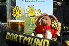 BVB!   Tooooooor! (Rabbitroundtheworld) Tags: black rabbit beer sport yellow germany munich bayern deutschland fan football die emma may bee gelb final dortmund schwarz league champions beste wembley bvb fusball 2013 rabbitroundtheworld