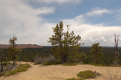 "bryce_208 • <a style=""font-size:0.8em;"" href=""http://www.flickr.com/photos/67316464@N08/8836766332/"" target=""_blank"">View on Flickr</a>"