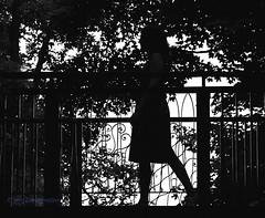 Footbridge Silhouette (zuni48) Tags: bridge blackandwhite woman monochrome silhouette footbridge monochromatic figure mygearandme longwodgardenspa zunikoff