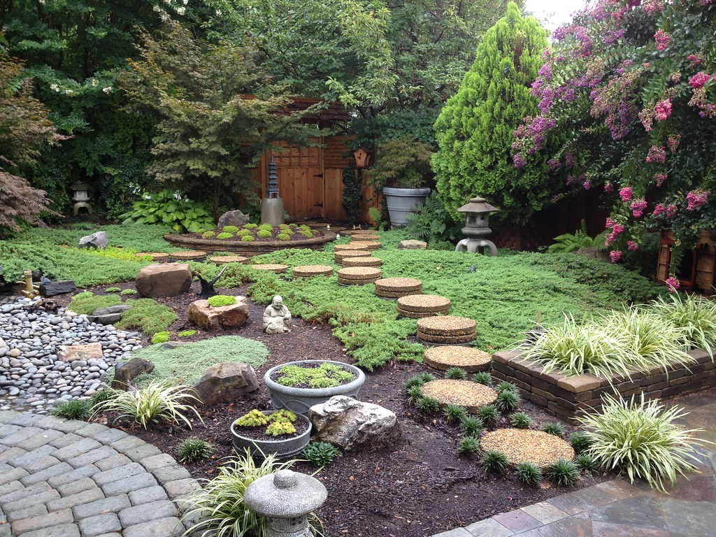 Stepping Stones Through Juniper (My DIY Garden) Tags: Garden Asian Japanese  Diy Backyard