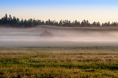 Ottawa valley homestead (I saw_that) Tags: morning color colour home fog barn sunrise fence ottawa shed august pasture valley homestead stead