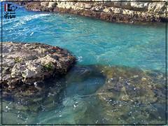 -  -   | Lattakia - burj islam - Syria (Young syrian's Lens -   ) Tags: sea summer lake nature water spring flickr ngc syria siria   lattakia latakia