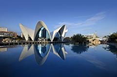 Valencia Reflected (Fotomondeo) Tags: españa valencia reflections spain nikon reflejos ciudaddelasartesylasciencias sigma1020mm cityofartsandsciences nikond7000 eloceanogràfic