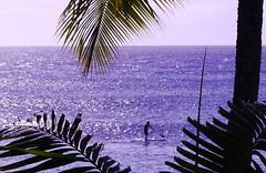 Napili Bay (SLDdigital) Tags: travel sun tourism beach island hawaii sand surf maui resort wakeboarding travelphotography hawaiianisland slddigital travelandleisuremagazine resortcities