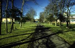 St Andrew's, Bearsden - Avenue