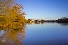 2013 : l'anne bleu (photosenvrac) Tags: jaune photo eau riviere dordogne bleu reflet arbre calme fleuve bergerac poselongue thierryduchamp