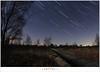 Sporen boven de knuppelbrug (1D157600) (nandOOnline) Tags: bomen nederland natuur sirius orion jupiter peel hemel limburg landschap ster maan stier sterren planeet sterrenbeeld maanlicht grootepeel sterrenbeelden ospeldijk