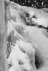 Muddy Creek Falls Detail #2 (HubbleColor {Zolt}) Tags: winter bw ice nature oakland blackwhite unitedstates maryland muddycreekfalls swallowfallsstatepark