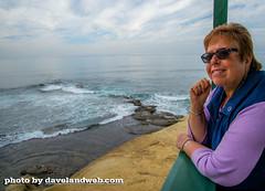 DSC_8750 (davelandweb) Tags: lajolla pacificocean beachphoto