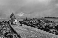 Island Hill at low tide (Roger Bradley (Ulster Photography)) Tags: family dog monochrome walk footpath tidal causeway comber