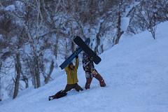 20158006 (Gansan00) Tags: winter snow japan canon beans snowboard   niseko   5dmk3
