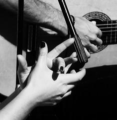 Flamenco Hands (Square Lamb) Tags: music sevilla guitar seville andalucia flamenco streetpassionaward