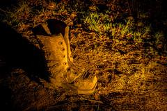 Wooden Boot (csakkarin) Tags: samsung snowdrop cambo kingsbarns nx1