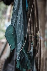 ShantyWall (Javier Suay Anton) Tags: poverty wall pared casa poor grain shanty carton shack elsalvador development champa ong ngo cooperation grano cooperacion chabola morazan cacaopera onl canon6d