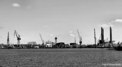 Noord 1-5-16 (kees.stoof) Tags: amsterdam shipyard damen ij noord shipbuilding hetij amsterdamnoord scheepswerf scheepsbouw