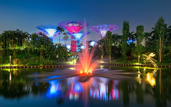 _MG_5560_web - Singapore Gardens by the Bay at night (AlexDROP) Tags: city travel urban colour water skyline architecture night garden singapore postcard famous best bluehour scape picturesque iconic mustsee 2015 canon6d ef16354lis