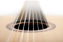 8-string guitar (grepe) Tags: guitar gitaar guitarmaker