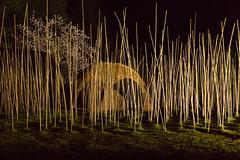 Parc oriental de Maulvrier (Maine et Loire) (Jacq-R) Tags: construction nuit concret maulvrier parcoriental techniquephotographiquestyle lumireclairagejournuit jardinparcdcoratif