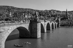 Heidelberg (davidgevert) Tags: bridge blackandwhite bw castle d750 heidelberg altstadt neckar leadinglines travelphotography neckarriver altebrcke europeanarchitecture germanarchitecture nikon2470mmf28 davidgevert gevertphotography nikond750