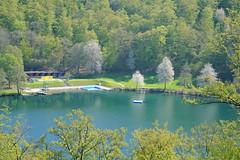 Daun - Manderscheid DSCF5661 (Denkrahm) Tags: eifel swimmingpool recreation gemndenermaar eifelsteig