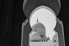 IMG_1221.jpg (svendarfschlag) Tags: uae mosque abudhabi unitedarabemirates sheikhzayedmosque   vereinigtenarabischenemiraten