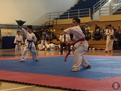 stefanou_15_5_2016_knockdown_127