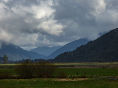 The Rain Will Soon Be Here (Steve Taylor (Photography)) Tags: blue trees newzealand sky cloud brown white green rain forest landscape spring stormy nz southisland southernalps