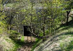 museumscenter_hanstholm-16-05-2016-161