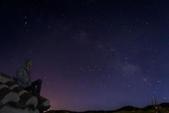 I miss you (Yuki~AstridDreams) Tags: sky naturaleza nature night stars landscape star bjd nia balljoineddoll crobi bjdoll crobidoll