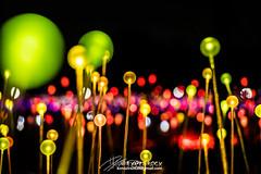 Uluru (Qicong Lin(Kenta)) Tags: lighting travel light color colour green night landscape nikon exterior australia exhibition nightlight l uluru d5 northernterritory ayersrock nignt coloris fieldoflight