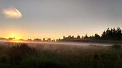Sunrise (careth@2012) Tags: sky mist nature field misty fog clouds sunrise dawn nikon scenery mood view britishcolumbia foggy scenic tranquility atmosphere scene serenity atmospheric 55300mm nikond3300 d3300