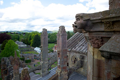 Melrose Abbey (David_Leicafan) Tags: roof abbey scotland view ruin gargoyle melrose borders greenman buttress 28mmsummicron