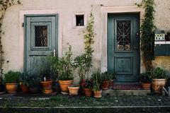 Two Doors (freyavev) Tags: blue plants house green schweiz switzerland doors outdoor zurich pots zürich botanicalgarden vsco