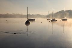 Brume matinale (rogermarcel) Tags: sun mist sunrise river landscape boat bateau brume waterscape bestcapturesaoi elitegalleryaoi rogermarcel
