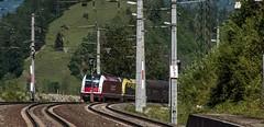 1220_2016_05_22_sterreich_Loifarn_Liegen_geblieben_SLB_1216_940_&_CARGO_1216_932_mit_Coilzug_und_CARGO_1216_933_Villach (ruhrpott.sprinter) Tags: world railroad schnee salzburg train germany logo deutschland graffiti austria sterreich diesel outdoor natur group siemens eisenbahn rail zug cargo best berge part 186 record nrw passenger alpen lm fret gelsenkirchen ruhrgebiet freight bb locomotives kv slb 185 189 lokomotive sz sprinter ruhrpott salzburger gter 1216 ekol 6186 1116 6185 6189 tauernbahn lokomotion reisezug schwarzach lokalbahnen kombiverkehr ellok swietelsky 357kmh cargoserv loifarn