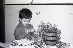 para visualizar no site, em grande, e em movimento seguir este link http://ift.tt/28TUQz1 (sombrasdealguem) Tags: film vintage found photography photo market feira da antiga fotografia flea rolos ladra encontrados