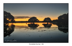 Forrestdale Sunrise (JChipchase) Tags: water sunrise reflections nikon australia d750 forrestdale