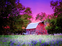 :: after the rain :: (mjcollins photography) Tags: pink sunset sky sun minnesota architecture barn rural evening skies purple country rustic down