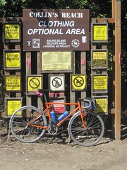 Clothing optional kit bike (Tysasi) Tags: bike permanent sauvieisland populaire randonneur brevet collinsbeach randonneuse 650b randonneuring kitbike cuthbertbinns bespokefopchariottm