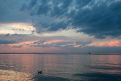 The Race - Sunset Series II (christophbieniek (catching up)) Tags: blue sunset sea sky sonnenuntergang himmel baltic blau ostsee niendorf timmendorfstrand