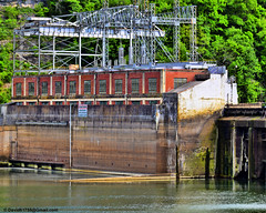 Dam's Powerstation (David Davila Photography) Tags: vacation tree water outdoor dam mo missouri wife branson geotag 2016 taney laketaneycomo nikond800 holuxm241